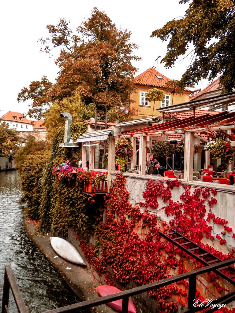 quai fleuri sur l'île de Kampa à Prague