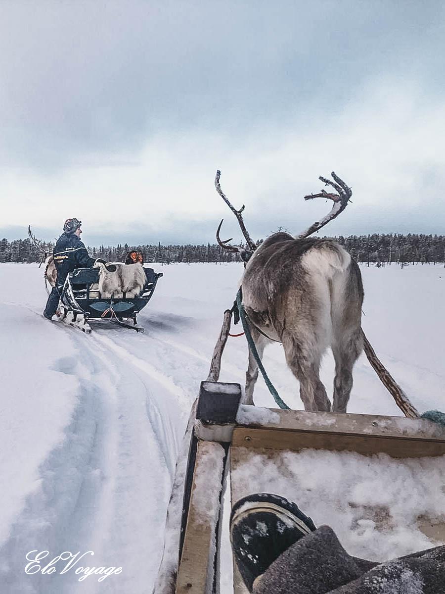 balade rennes laponie finlande